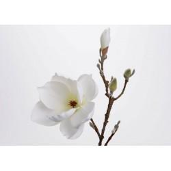 Fleur artificielle de magnolia Amadeus