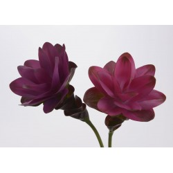 Fleur artificielle Curcuma tropical H 62 cm Amadeus