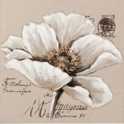 Toile fleur 70 x 70 cm collection Imageland