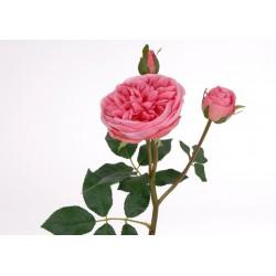 Fleur artificielle rose Ronsard H 57 cm Amadeus