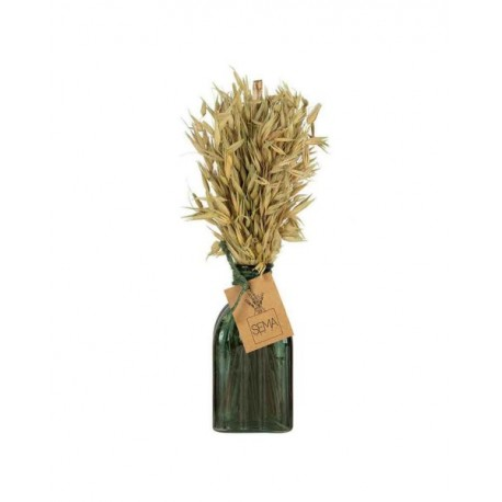 Vase plante sèche New folk H28 cm Sema